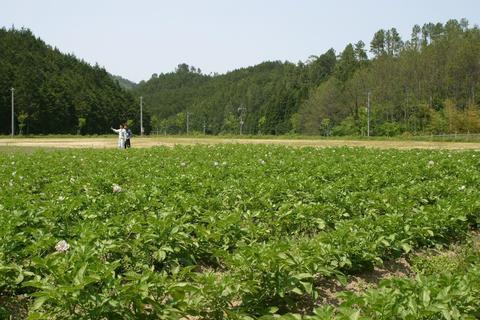 田川市民体験農園